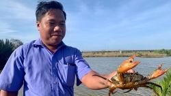 Dự án MAM 2 giúp nông dân Trà Vinh phát triển mô hình chăn nuôi quảng canh