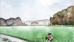 Du khách Pháp vẽ tranh về vẻ đẹp dọc miền đất nước hình chữ S