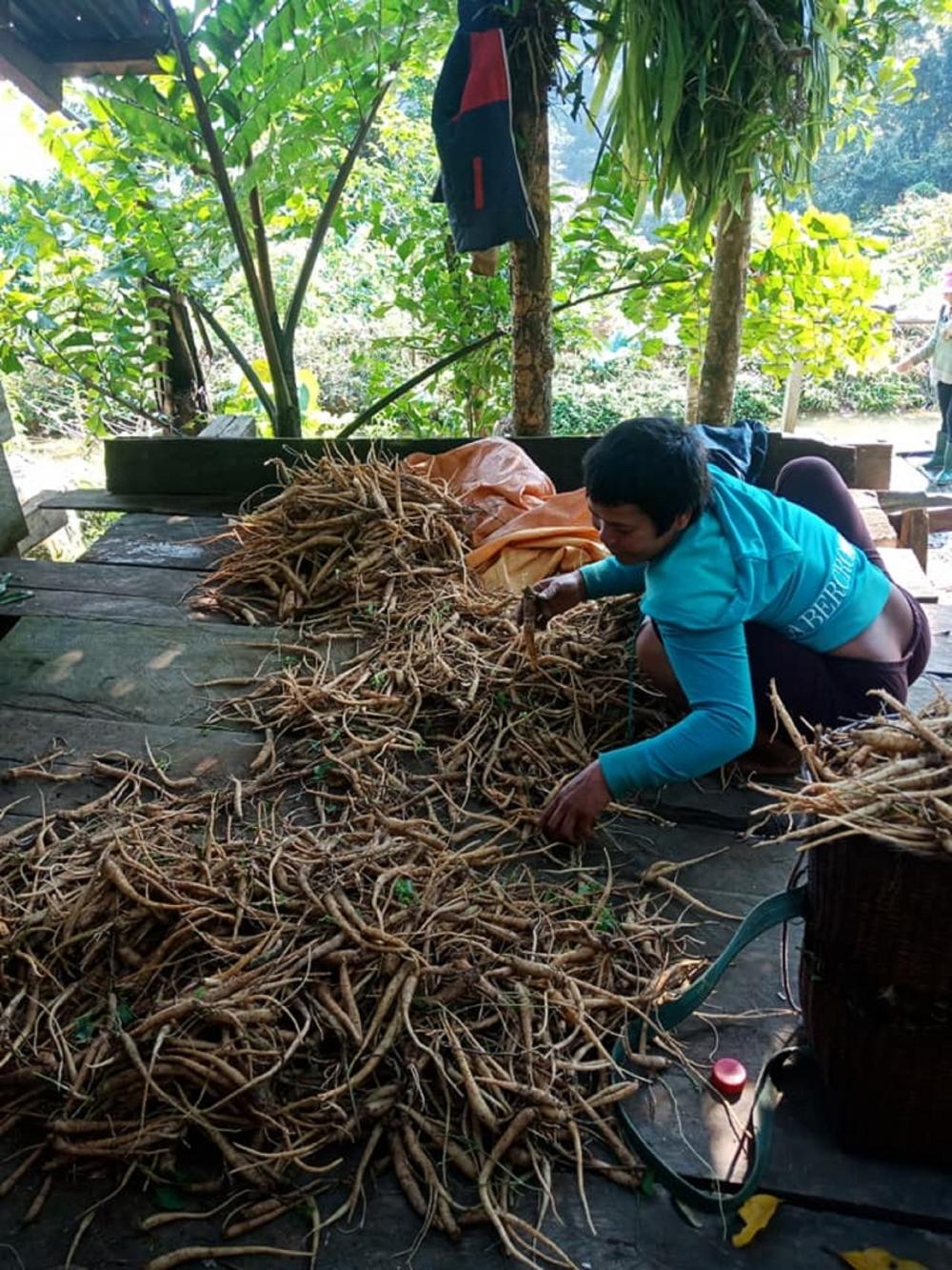 Quảng Nam: Ngôi chợ lạ ở huyện biên giới Tây Giang gi gỉ gì gi cái gì cũng bán giá 5 ngàn - Ảnh 3.