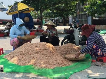 Cận cảnh quá trình phơi khô ruốc biển của ngư dân Đà Nẵng