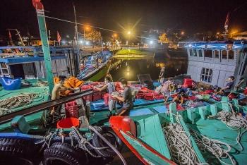 Tạm dừng hoạt động cảng cá lớn nhất Đà Nẵng