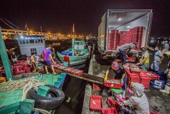Giữa mùa dịch, ngư dân ở cảng cá Thọ Quang vẫn miệt mài mưu sinh