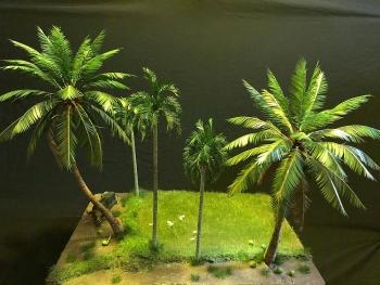 Biệt tài dựng cây cảnh mini của chàng phụ hồ quê Quảng Ngãi
