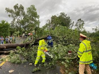 Đà Nẵng khẩn trương dọn dẹp cây gẫy đổ, nhắc nhở người dân trú bão số 5