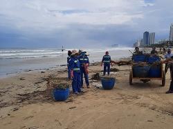 Đà Nẵng: Huy động lực lượng dọn rác hàng chục km bờ biển