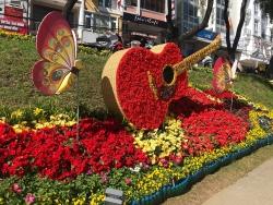 nhieu hoat dong tung bung tai festival hoa da lat 2019