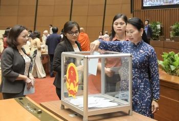 Quyền và nghĩa vụ của cử tri trong bầu cử