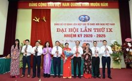 Bà Nguyễn Phương Nga đắc cử Bí thư Đảng ủy Liên hiệp các tổ chức hữu nghị Việt Nam
