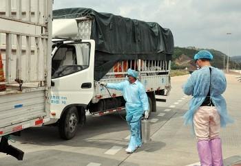 Trung Quốc tạm dừng nhập khẩu thanh long qua lối mở Km3+4 Quảng Ninh