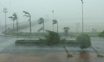Bão số 7 đã suy yếu, bão số 8 giật cấp 11 đang tiến về Biển Đông