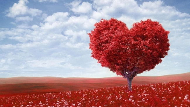 Ngày Valentine năm nay nhằm vào mùng mấy Tết?