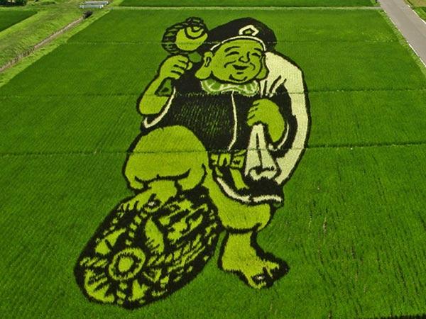 Cận cảnh những kiệt tác nghệ thuật khổng lồ trên đồng lúa Nhật Bản