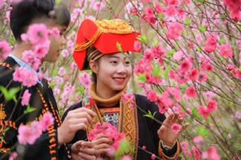Lạng Sơn hoãn khai mạc Festival Hoa Đào – Xuân Xứ Lạng 2021