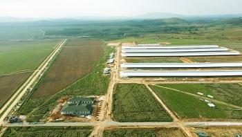 Tổ hợp trang trại tại Lào của Vinamilk đẩy nhanh tiến độ hoàn thành giai đoạn 1