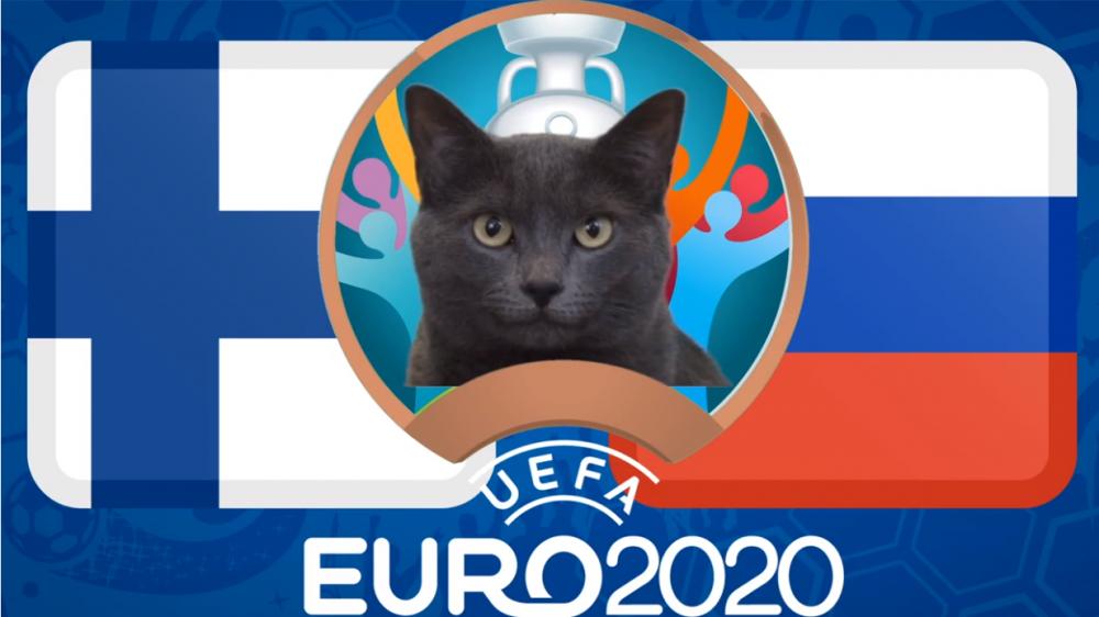Mèo tiên tri dự đoán Phần Lan vs Nga - EURO 2021: Mèo Cass chọn 'Gấu Nga'