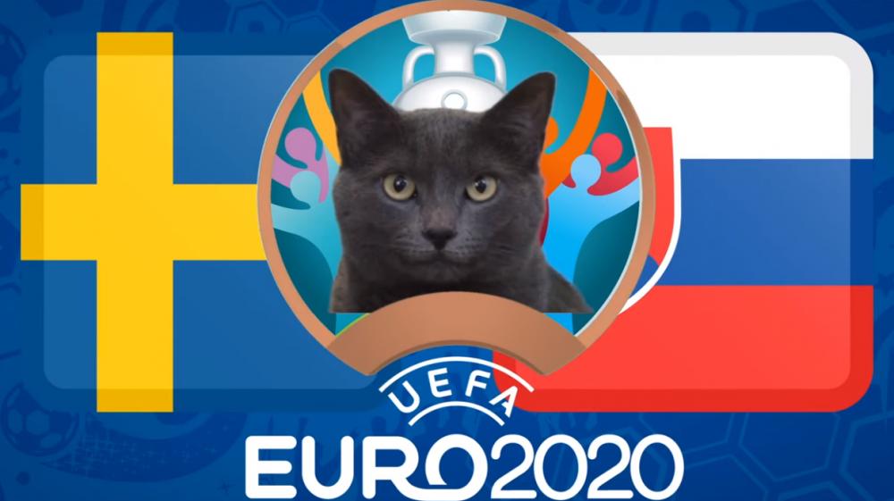 Mèo tiên tri dự đoán Thụy Điển vs Slovakia - EURO 2021: Kết quả bất ngờ