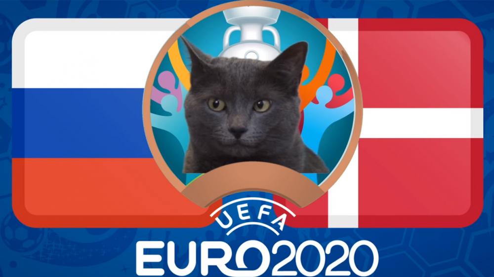 Mèo tiên tri dự đoán Nga vs Đan Mạch - EURO 2021: Mèo Cass thích 'Gấu Nga'
