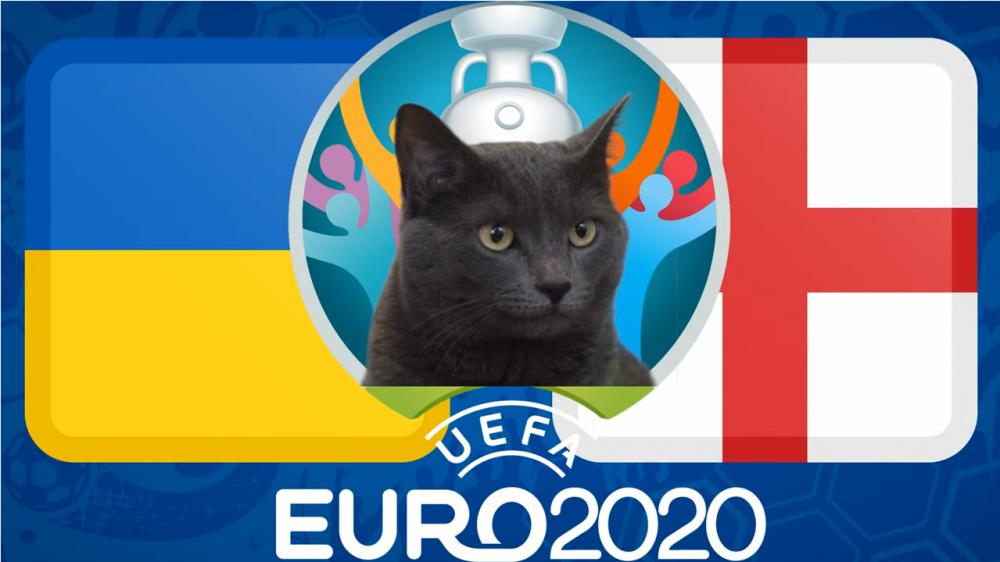 Mèo tiên tri dự đoán Anh vs Ukraine, 02h00 ngày 4/7 - vòng tứ kết EURO 2021