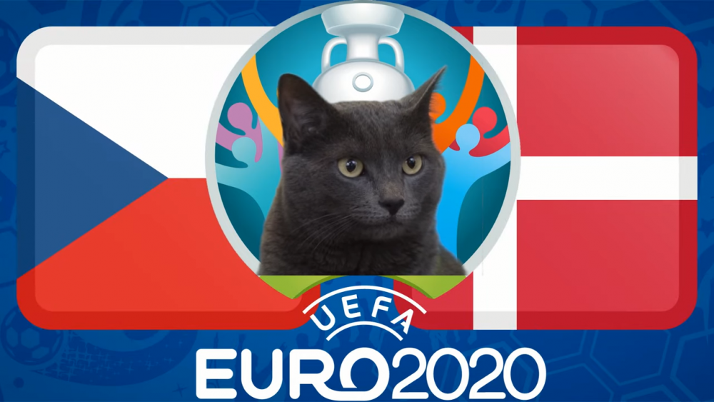 Mèo tiên tri dự đoán CH Séc vs Đan Mạch, 23h00 ngày 3/7 - vòng tứ kết EURO 2021