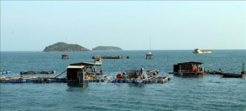 Quy định mới về giao khu vực biển