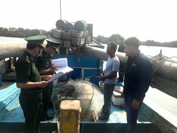 Vũng Tàu: Tạm giữ 5 tàu cá để tra sai phạm trong thủy sản