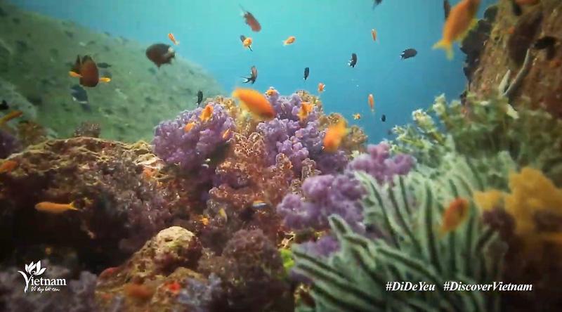 """Biển đảo Việt Nam ấn tượng trong clip """"Việt Nam: Đi Để Yêu! – Bao la biển gọi"""" -0"""