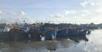 Ninh Thuận: Kiểm soát chặt hoạt động của tàu cá