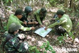 Xuyên rừng gỡ bẫy mang lại yên bình cho bán đảo Sơn Trà
