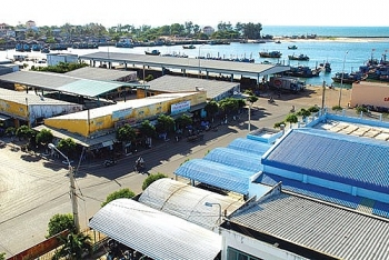Bình Thuận: Tăng cường phòng chống dịch tại các cảng cá