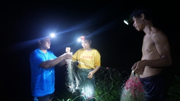 """Xuyên đêm săn """"đặc sản"""" trên biên giới Việt - Lào"""