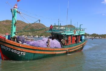 Xử phạt hơn hơn 1.500 tàu cá vi phạm các quy định khai thác thủy sản