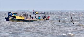 Nguồn thủy, hải sản ven bờ đang dần cạn kiệt