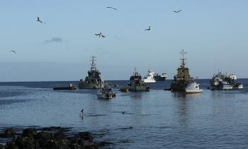 Hàng trăm tàu cá Trung Quốc bị cáo buộc tắt hệ thống liên lạc để né giám sát