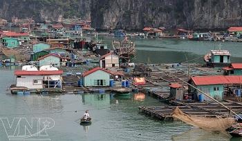 Khám phá làng chài cổ nhất Việt Nam