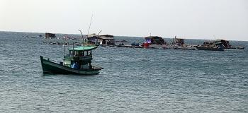 Kiên Giang: Chú trọng khai thác, thúc đẩy nghề nuôi biển