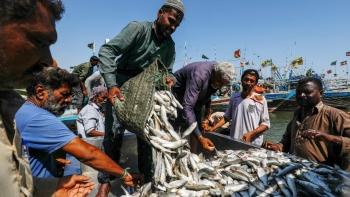 Ngư dân Pakistan lo tàu cá Trung Quốc làm cạn kiệt ngư trường