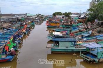 Cà Mau: Phát triển nghề cá  bền vững, có trách nhiệm