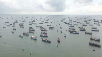 Cảnh báo nguy cơ cạn kiệt hải sản do Trung Quốc xây đảo nhân tạo và đánh bắt quá mức