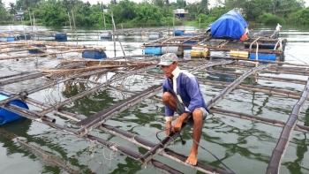 Quảng Nam: Ngư dân tất tả phòng, chống bão số 5