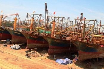 """Nhiều chủ """"Tàu cá 67"""" quá hạn nợ hàng trăm tỷ đồng"""
