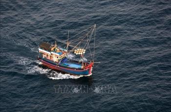 Đà Nẵng chi hơn 20 tỷ đồng hỗ trợ tàu cá vươn khơi
