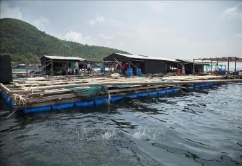 Phát triển đồng bộ hệ thống cơ sở hạ tầng phục vụ nuôi biển