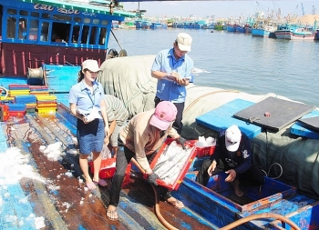 Bà Rịa-Vũng Tàu: Truy xuất nguồn gốc hải sản tại các cảng cá