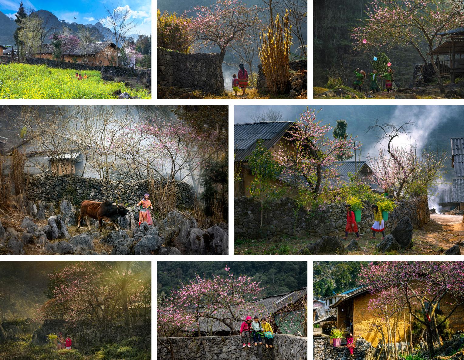 Bộ ảnh 'Mùa Xuân ở Lao Xa' của Lê Việt Khánh (Hà Nội)- giải Ba