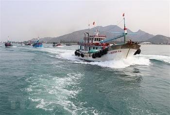 Ninh Thuận: Đẩy mạnh đánh bắt xa bờ góp phần bảo vệ chủ quyền biển đảo