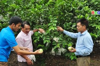 Hà Giang: Làng người Dao kiểu mẫu ở Hùng Tâm