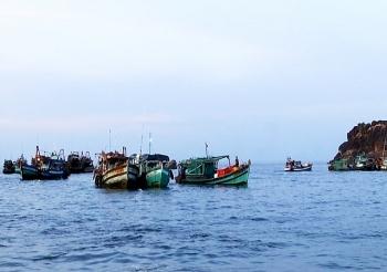 Cà Mau: Bắt buộc lắp đặt thiết bị giám sát tàu cá