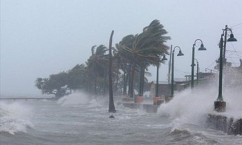Dự kiến phải di dời khoảng 500.000 cư dân nằm trong diện rủi ro khi bão số 5 đổ bộ