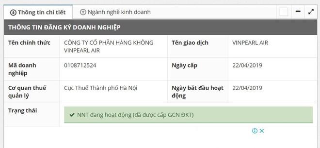 chu hang khong vinpearl air la ai