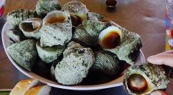 Cồn Cỏ - hòn đảo xinh đẹp của Quảng Trị với nhiều đặc sản vừa ngon, vừa quý hiếm